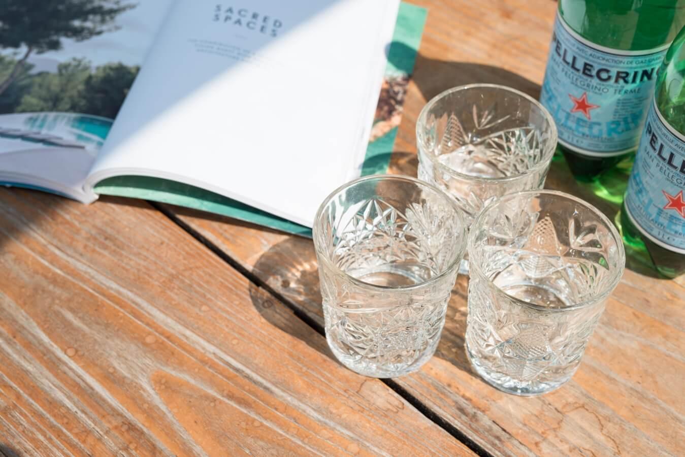 Stalen tuinkamer glas Groot Ammers